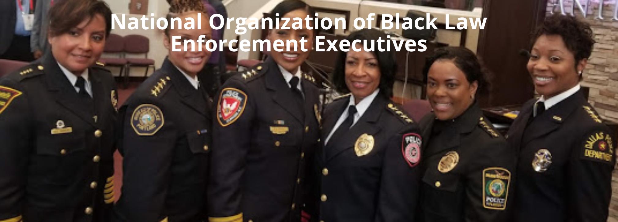 Diversity law enforcement essay